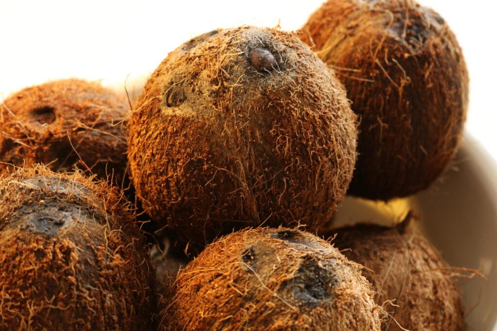 Hjemmelavet kokosolie